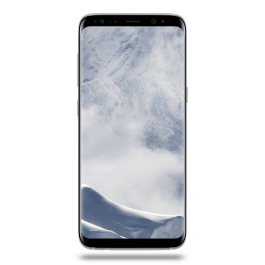 Galaxy S8 64 Go Argent