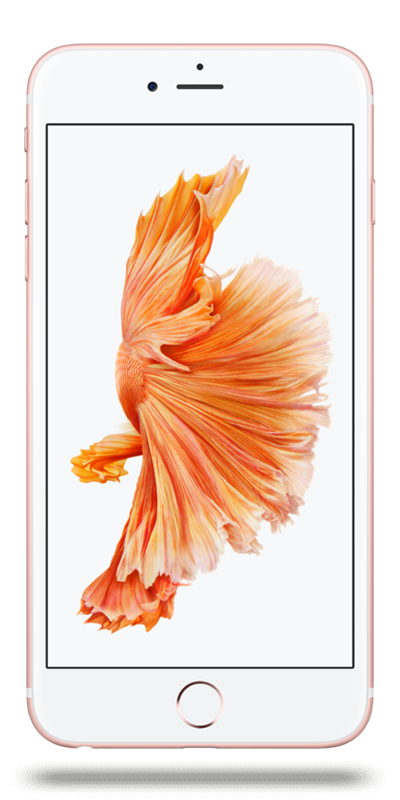 apple iphone 6s plus or rose 32go smartphone bouygues telecom. Black Bedroom Furniture Sets. Home Design Ideas