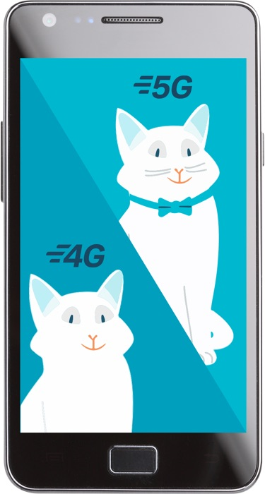 Visuel comparatif 5G 4G avec un chat - Bouygues Telecom