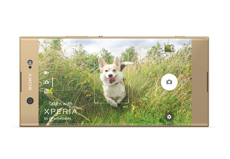 Autofocus hybride - Sony XA1 Ultra